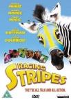 Racing Stripes artwork
