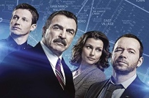 Blue Bloods artwork