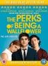Perks of Being a Wallflower artwork