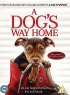 A Dog's Way Home artwork