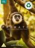 Primates artwork