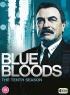 Blue Bloods S10 artwork