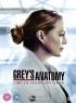 Grey's Anatomy S17 artwork