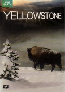 Yellowstone (2009) artwork