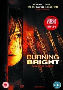 Burning Bright artwork