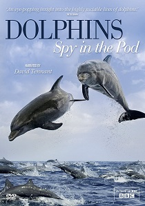 Dolphins - Spy In The Pod artwork