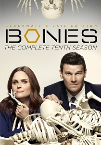 Bones: Season 10 (2014) artwork