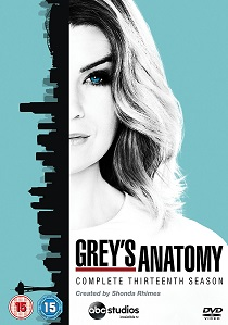 Grey's Anatomy: Season 13 (2017) artwork