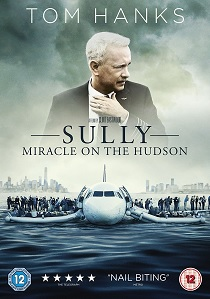 Sully: Miracle on the Hudson (2016) artwork