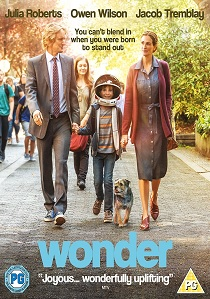 Wonder (2017) artwork