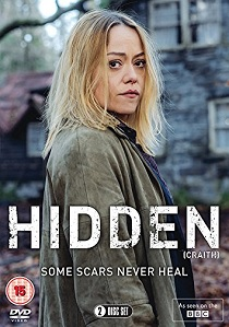 Hidden (2018) artwork