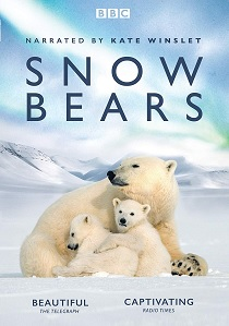 Snow Bears artwork
